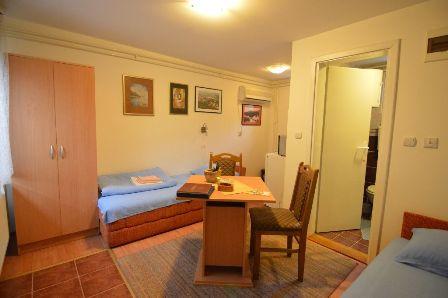 Apartman 1 | Smeštaj Aleksandar Banja Koviljača